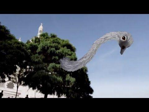 Safari Imaginaire - YouTube