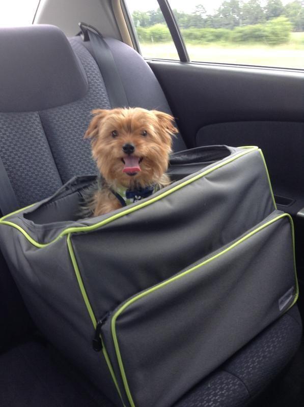 Good2Go Booster Dog Car Seat