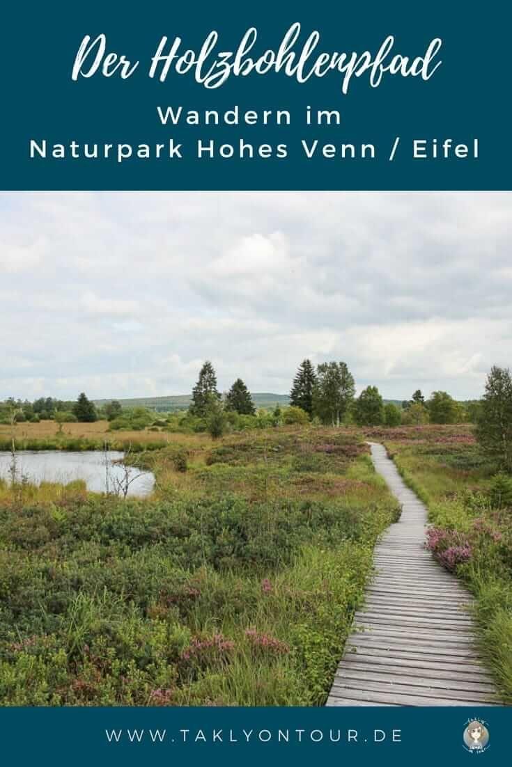 Wanderung im Naturpark Hohes Venn – Eifel