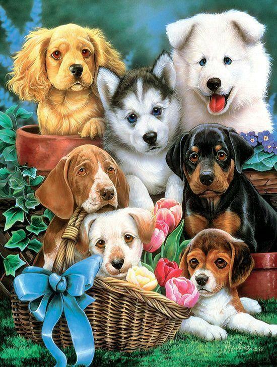 Pintura perritos