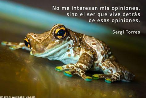 ..... SERGI TORRES