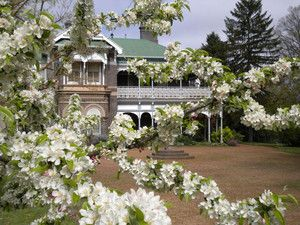 Saumarez Homestead in Spring - Saumarez Homestead, Museums, Armidale, NSW, 2350 - TrueLocal