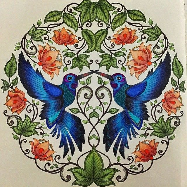 25+ Melhores Ideias De Desenho De Beija Flor No Pinterest