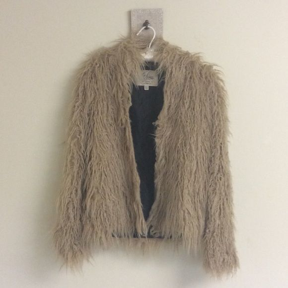 """LIP SERVICE Peter, Paul And Bloody Marys """"Tom Cat"""" jacket #41-205"""