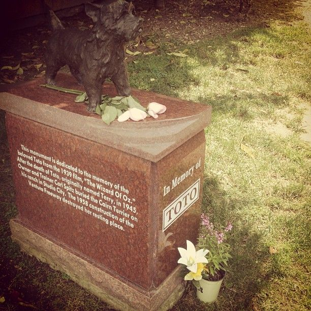In memory of Toto. The Wizard of Oz.