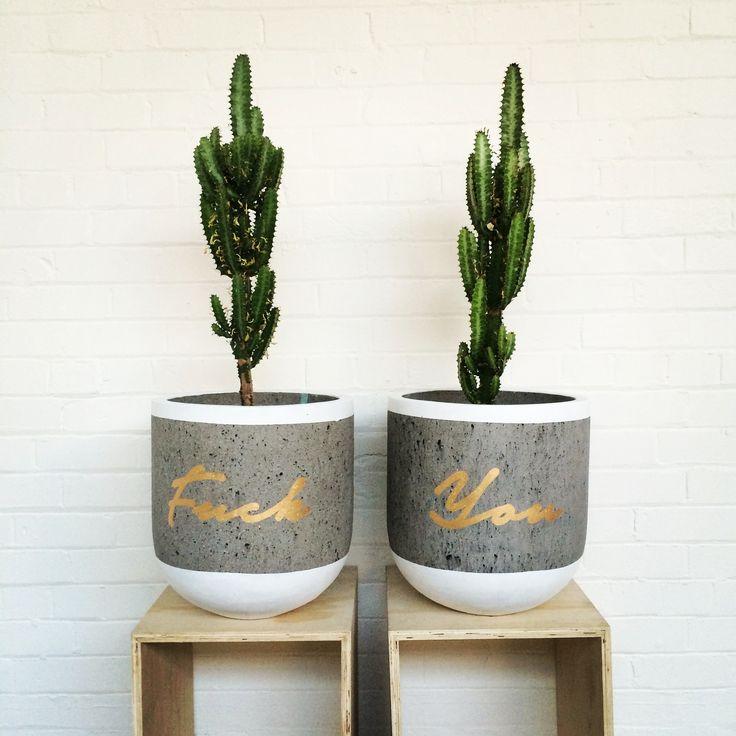 Fuck you pots cacti