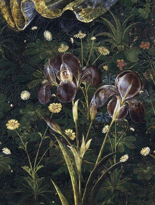 iris, Sandro Botticelli, detail from 'La Primavera - An Allegory of Spring'' c.1482