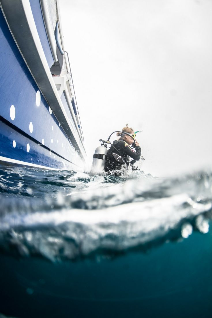The best moment - just before you start a scuba dive #GreatBarrierReef