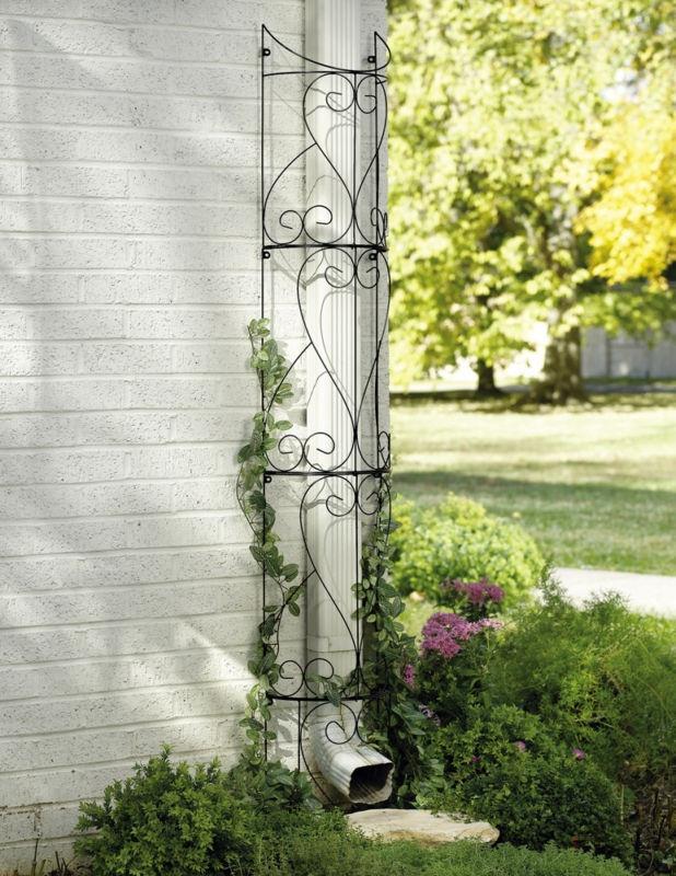 17 best images about arbor 39 s on pinterest window rose for Window trellis design