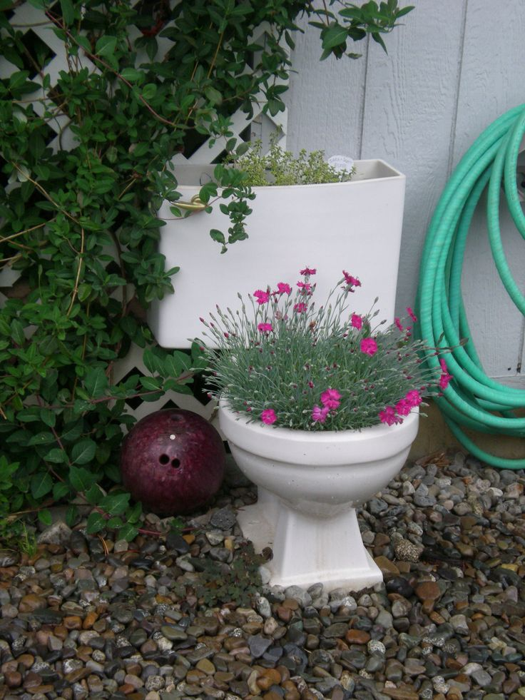 Creative Container Gardening I picked this toilet
