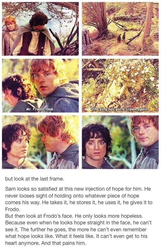 Frodo and Sam. The Lord of the Rings. Hobbits. Hope. Frodo Baggins. Samwise Gamgee. The fellowship of the ring. The two towers. the return of the king. the king has his crown again.