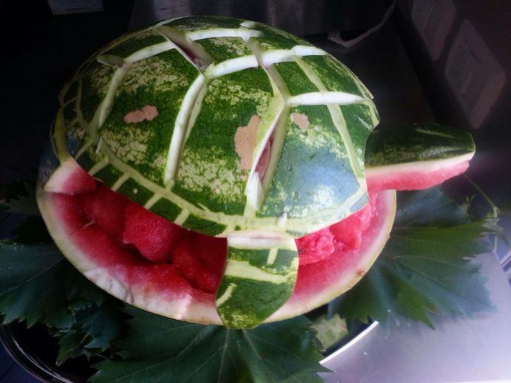 Tartaruga di anguria