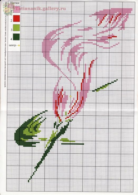 Calla lily cross stitch