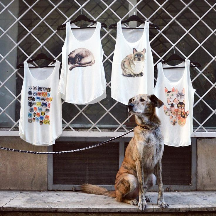 🐈 Furry friends 🐕  cat inspired graphic tanktop szputnyikshop animals cats dog cute / superfurryanimals / mensbestfriend / purr