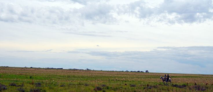 Two #horse riders and a big sky somewhere in the Free State by Rosemary Hall