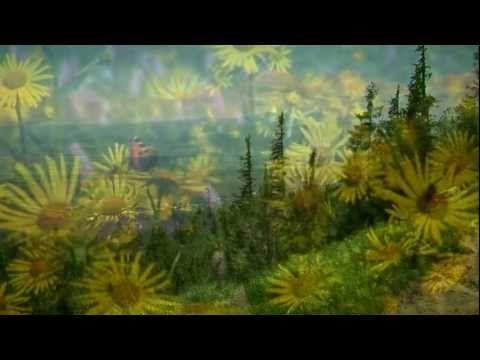 JAKUBEC Martin - Tam, doma - Slovensko - YouTube