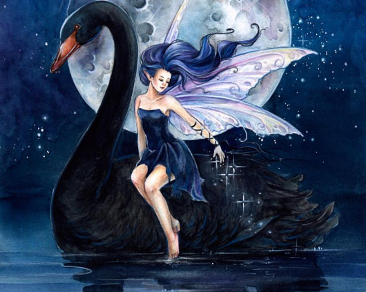 Black swan and the little fairy - (#137718) - High Quality and ...