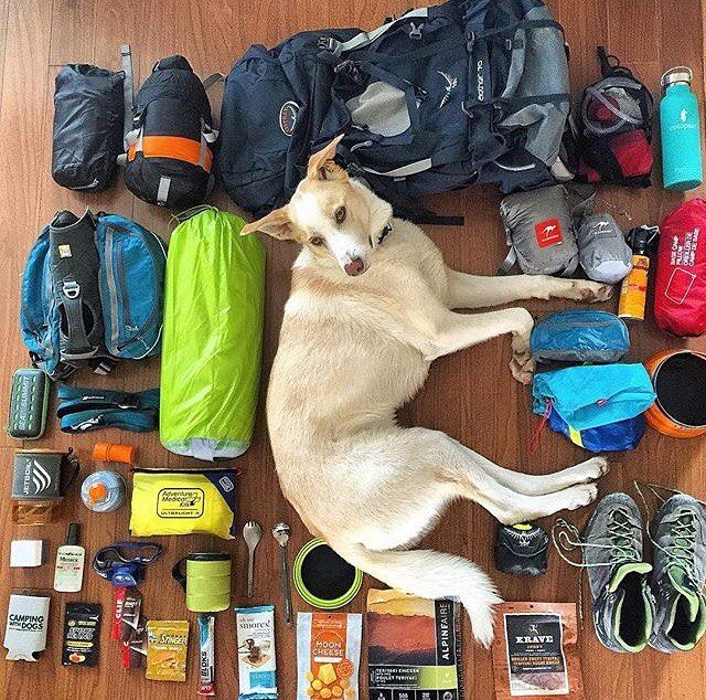19 Best Images About Camping On Pinterest: 19 Best BACKPACKING LUNCH IDEAS Images On Pinterest