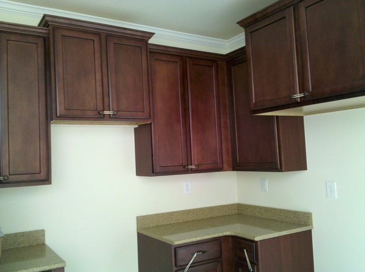 Stained maple cabinets and quartz countertops in the ... on Maple Kitchen Cabinets With Quartz Countertops  id=85700
