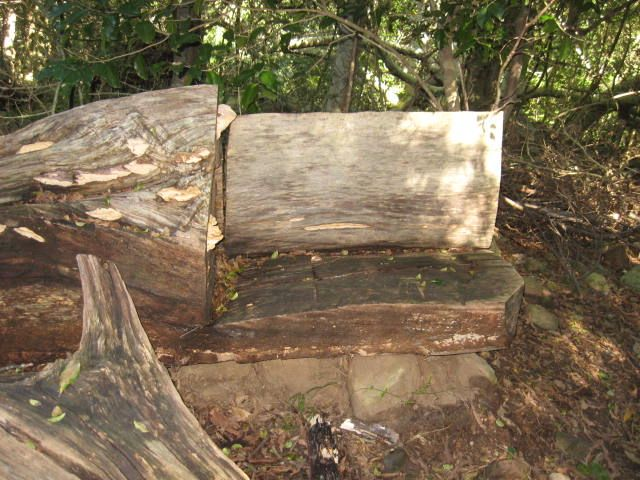Bench made from old tree stump