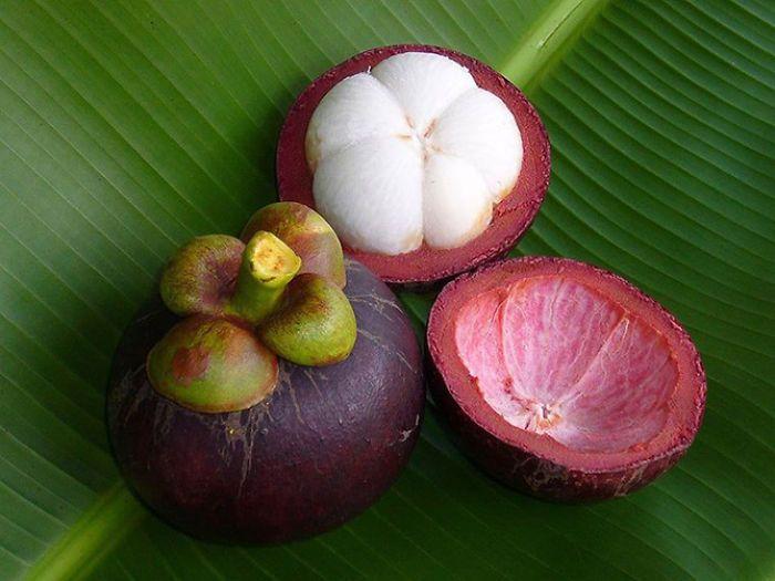 Mangoustan,fruit des Dieux