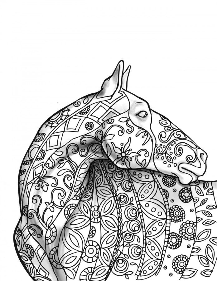 adult coloring pages horse 1