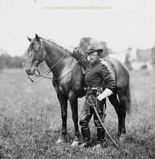 American Civil War Horses pictures - photos & art pics