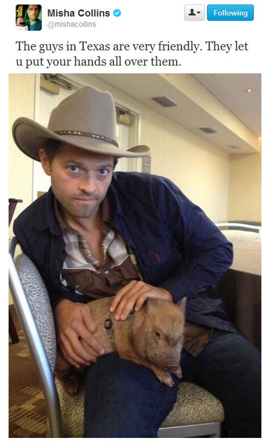 """""""They let you put your hands all over them"""" Misha Collins"""