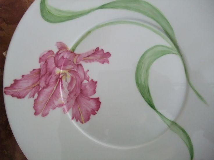 serie tulipes C.Molle