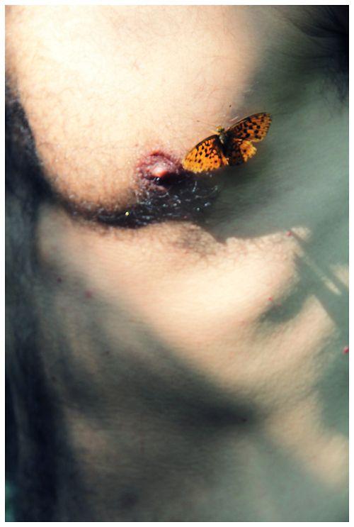 : Male Body, Feral Male, Butterflies Kiss, Places, Portraits, Photography Men, Men Art, Art Photos, Man