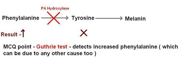 Guthrie test... phenylalanine increased...