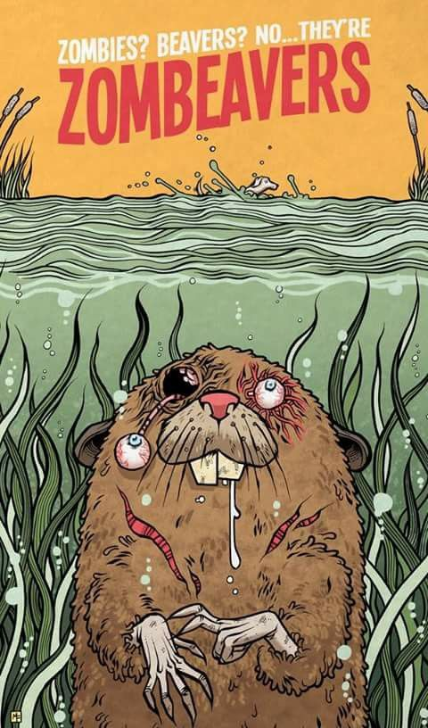 668 best images about AFFICHES DE FILMS - MOVIES POSTERS ... Zombeavers