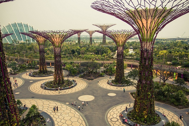 Gardens by the bay...Singapur
