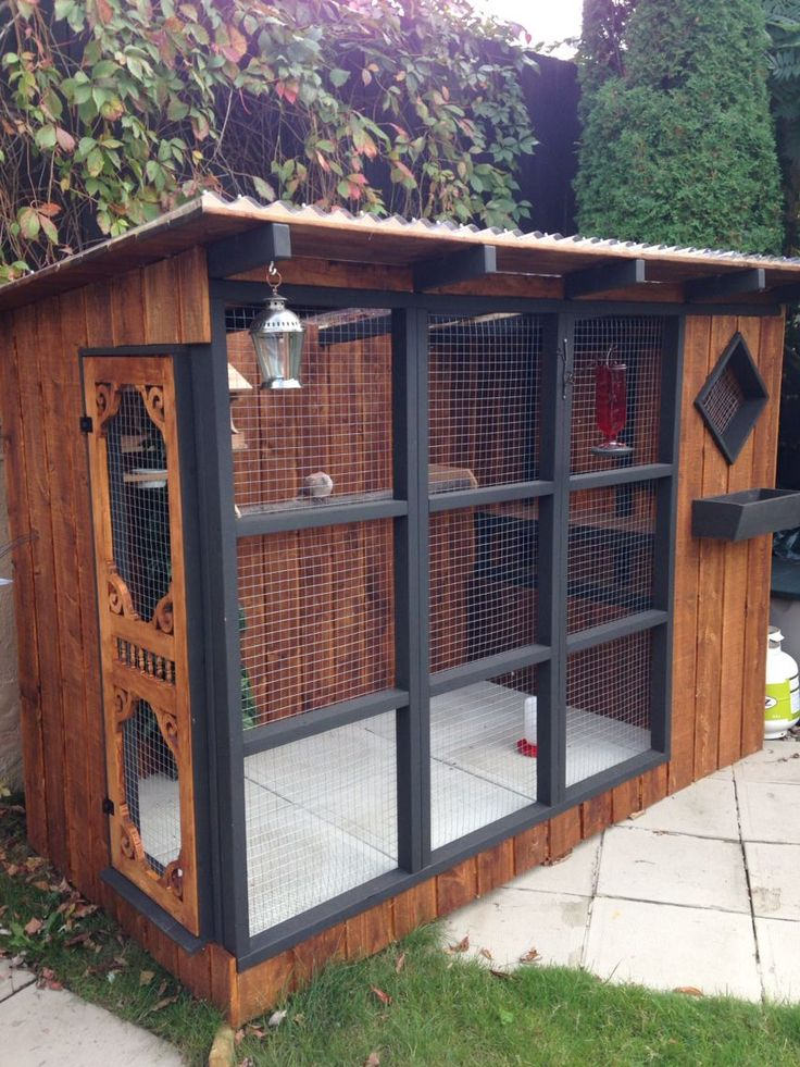 best 25 bird aviary ideas on pinterest cages for birds. Black Bedroom Furniture Sets. Home Design Ideas