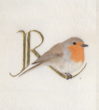 R for Robin