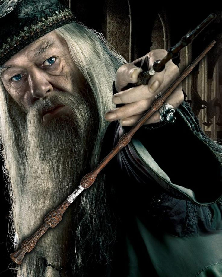 17 best images about harry potter on pinterest ron for Dumbledore original wand