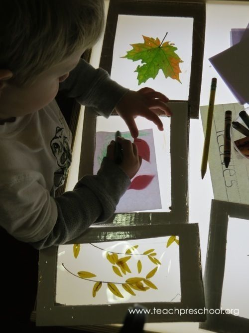 Fall Leaves at the Light Table by Teach Preschool