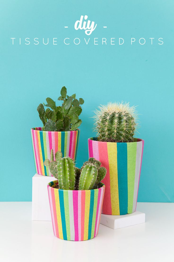 DIY Tissue Paper Covered Flower Pots