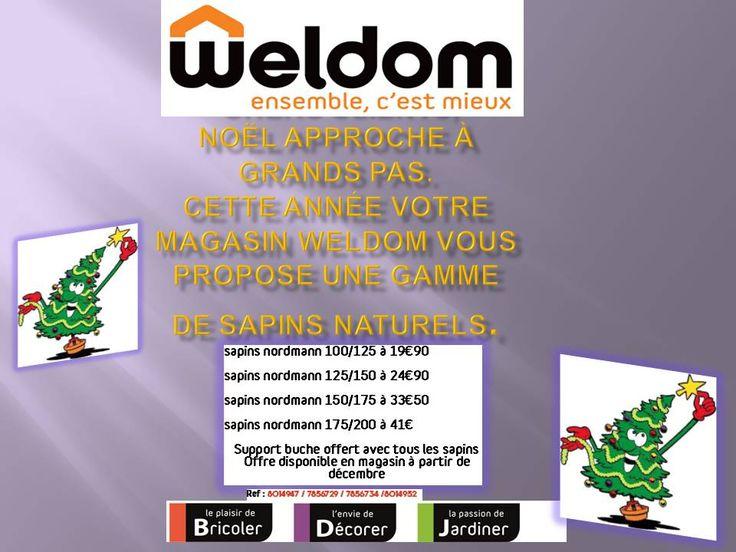 Chers clients, Noël approche à grands pas et cette année votre magasin Weldom Chaumont vous propose une gamme de sapins naturels à partir de 19€90 (offre disponible la première semaine de Décembre) Pour connaitre les prix merci de suivre ce lien:  http://www.mon-weldom-chaumont.com/actualites/actualite-sapins-noel_wdm-actus_itemID170.html