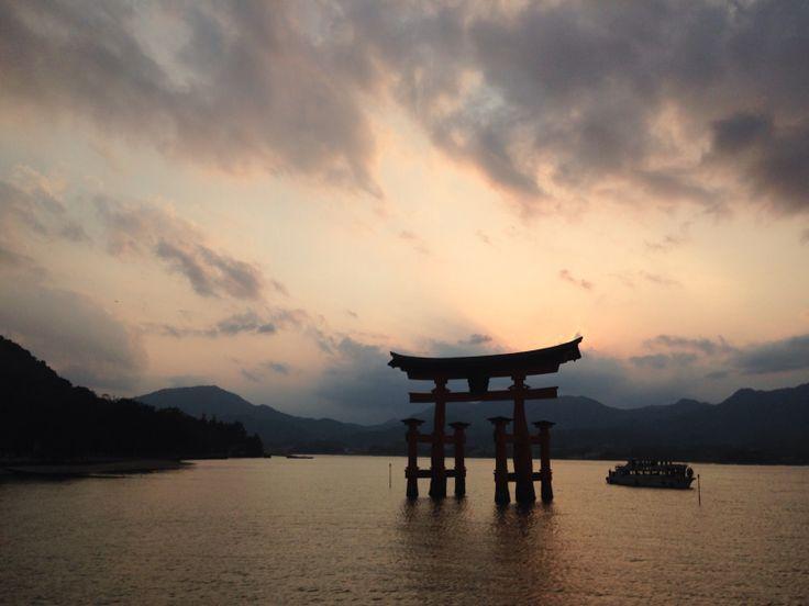 Tori at Miyajima, Hiroshima