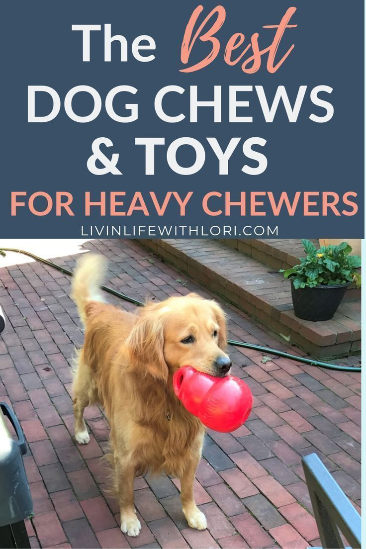 Best Dog Chews And Dog Toys For Heavy Chewers Dog Chews Best