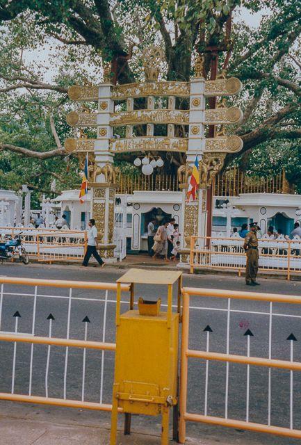 Sri Lanka – Ein echtes Traumziel