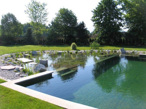 Natural Swimming Pools Benefits Considerations And Cost To Build Natural Swimming Ponds Pool Landscaping Swimming Pools Backyard