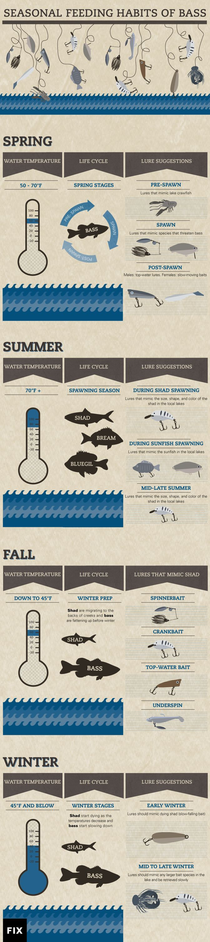 Take advantage of the seasonal habits of bass to catch more in spring, summer, fall, and even winter #fishing