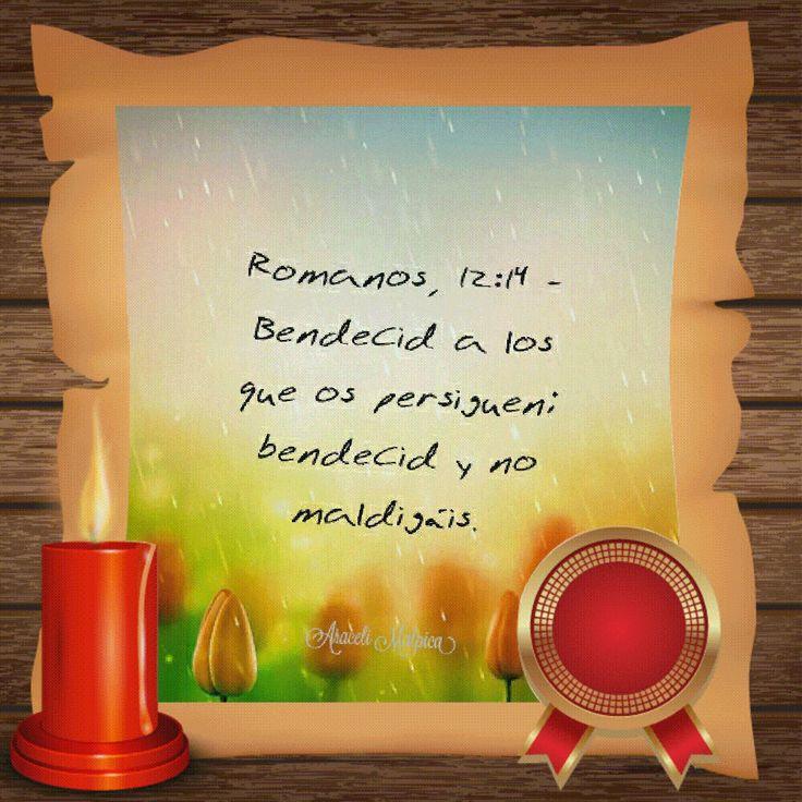 ARACELI MALPICA- Posters : ROMANOS, 12:14 Romanos, 12:14 - Bendecid a los que os persiguen; bendecid y no maldigáis.