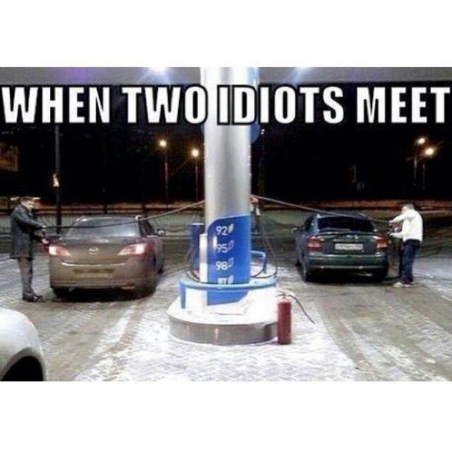 Idiots make life entertaining