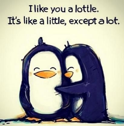 Cute Love Quotes For Your Crush - Wish I had the guts to say that!:
