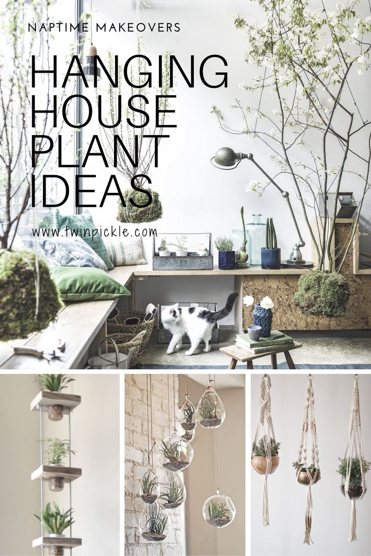 I have been browsing hanging house plant ideas on Pinterest long enough... it's time to do something about it. Maybe you, like me, are looking to add more green to your home in 2017? You