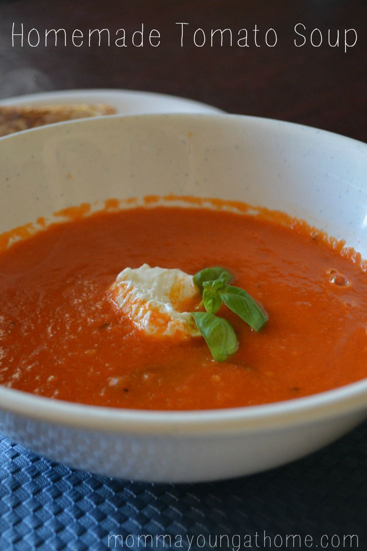 Homemade Tomato Soup from the garden Pin