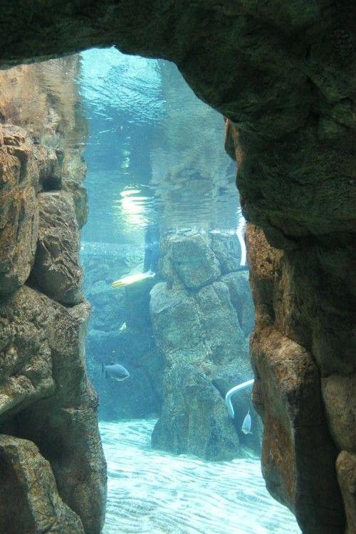 Underwater Cave..........J'aimerais tellement respirer sous l'eau..........